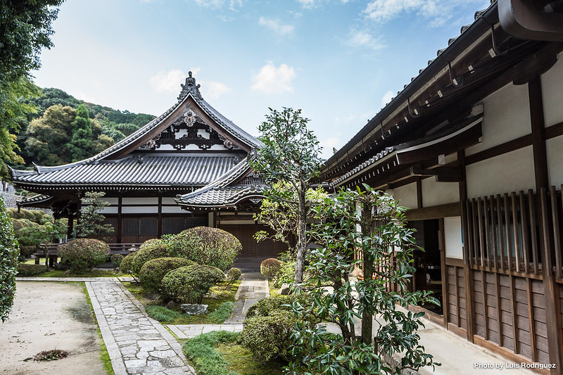 Chion-in-101