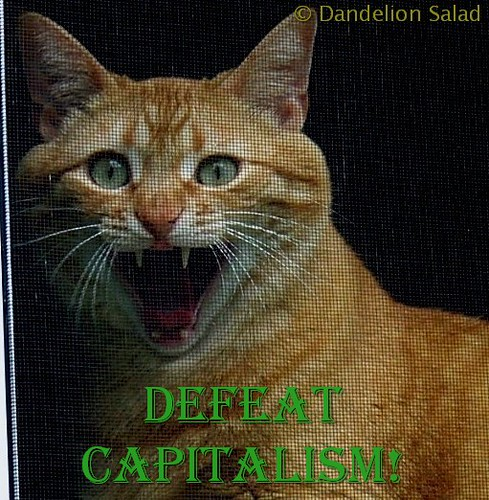 Josiah Says Defeat Capitalism