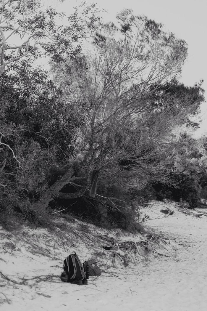 Fraser/k'gari - lake Mckenzie black and white