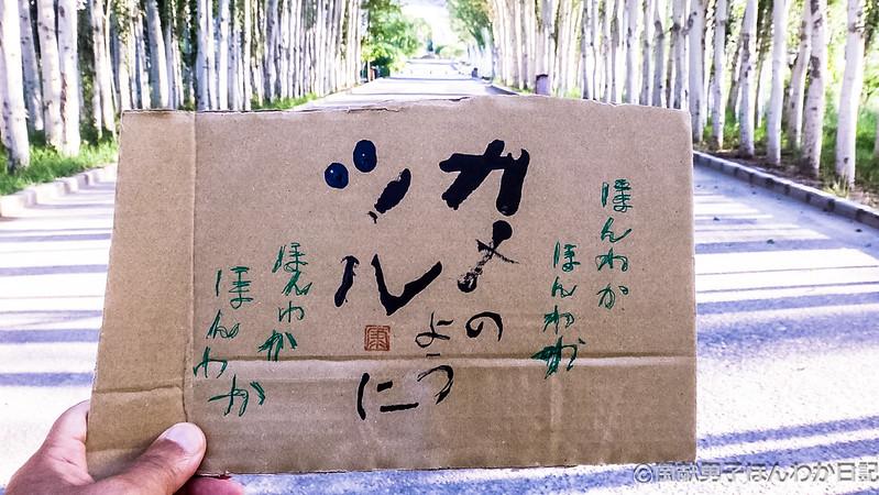 小僧落書き、背景はキジル千仏洞ポプラ並木(撮影:筆者)