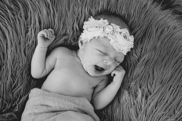Taylor's Newborn Session