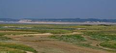 Baie de l'Authie - Photo of Tigny-Noyelle