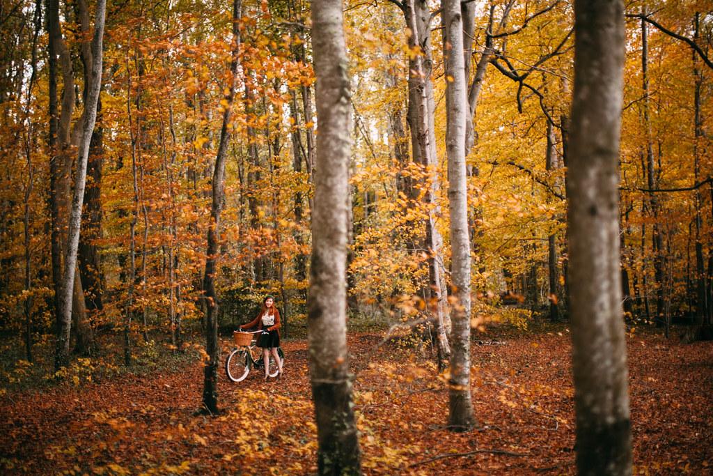 woodsbike-36