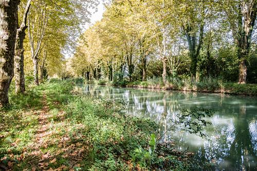 22-Canal Latéral à la Garonne