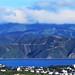Wellington Landscape