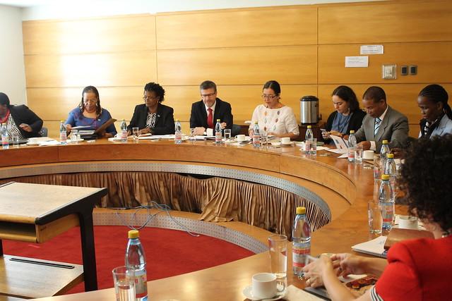 Comisión de Comercio e Inversiones Chile-Botswana