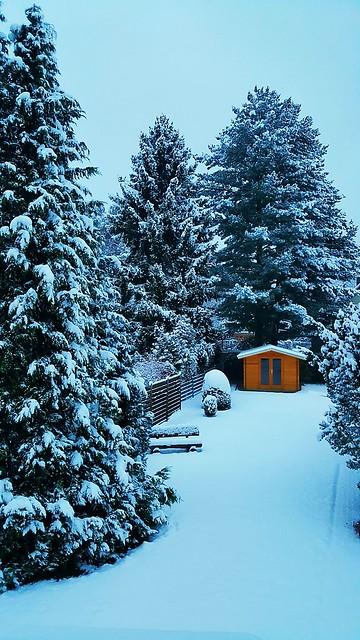 Osterode - Winter im Garten
