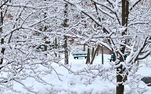 Un banc de neige !?