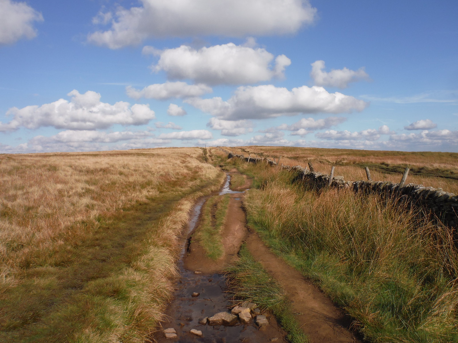 Track on Rushup Edge SWC Walk 302 - Bamford to Edale (via Win Hill and Great Ridge)