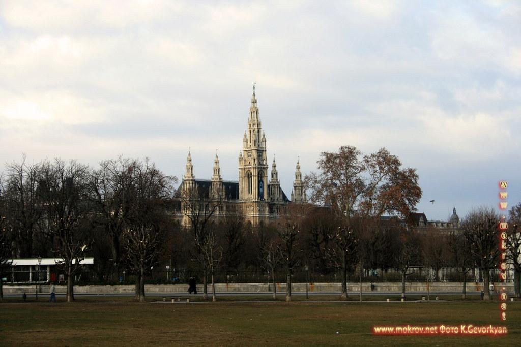 Город Вена, столица Австрии фото