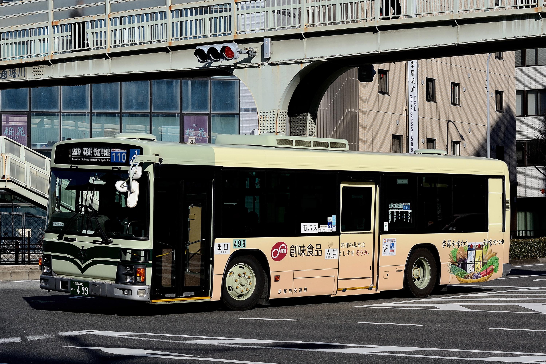Kyotoshi_499