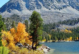 Autumn Morning at Rock Creek Lake, Sierra Nevada 2016