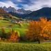 Autumn Dream by albert dros