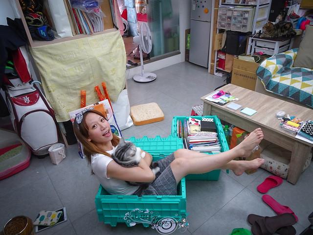 Pingi香港最大到府迷你倉Boxful任意存全台唯一合法 (16)