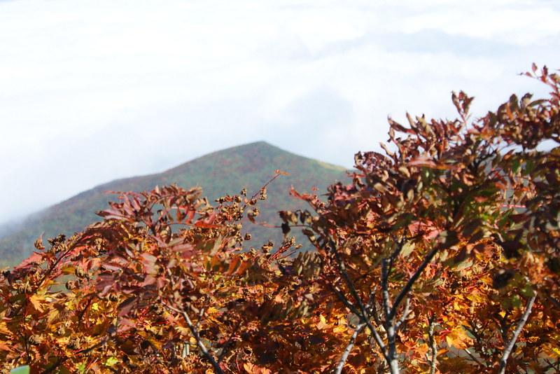 20130929_栗駒山_1023