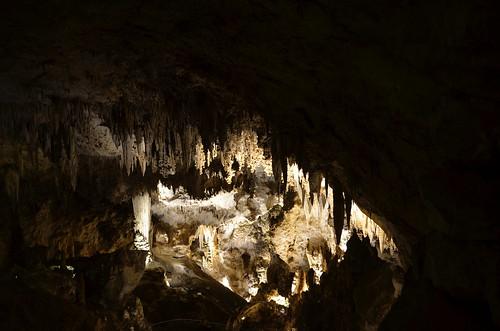 Carlsbad cave 1