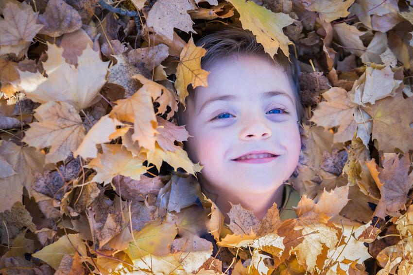 Enterrado en hojas