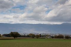 Fietstocht rondom Bernex - 21 oktober 2017