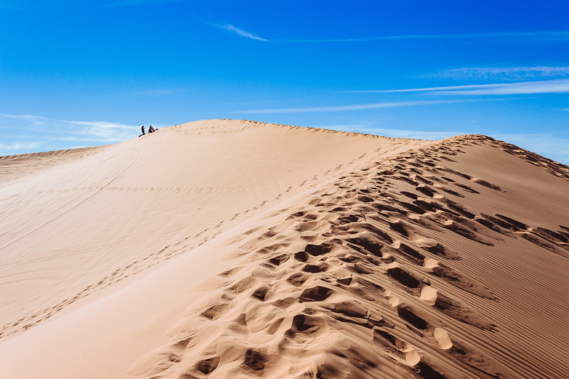 Coral Pink Sand Dunes State Park, November 11th, 2017