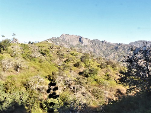 i-Mount Abu-udaipur (4)