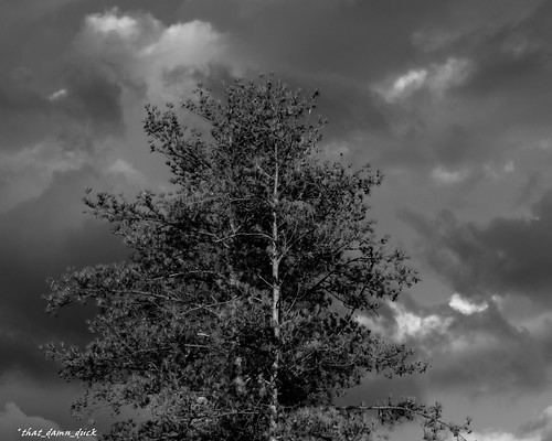blackwhite monochrome clouds storm thunderstorm stormclouds nature bw blackandwhite