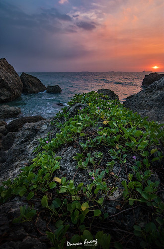 西子灣夕陽