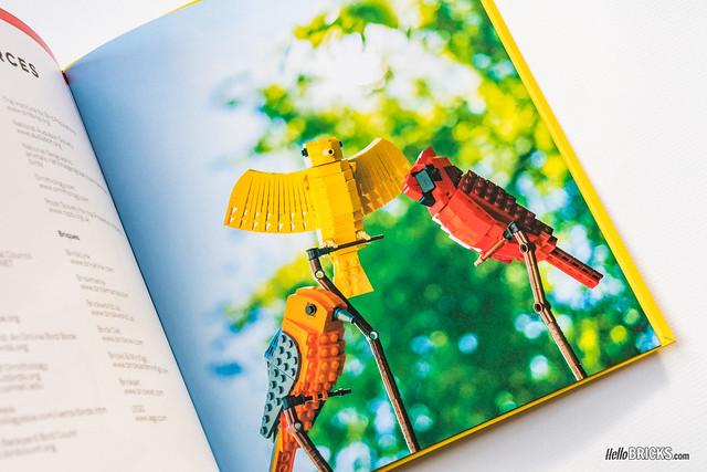 Livre LEGO Birds 05