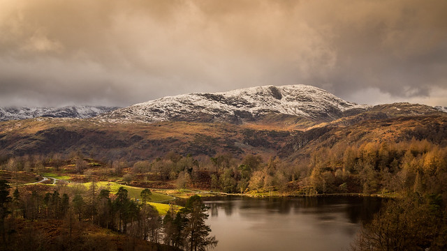 A Gentle Splash of Light - Tarn Hows - The Lake District - Cumbria, [Explored 29/11/2017]
