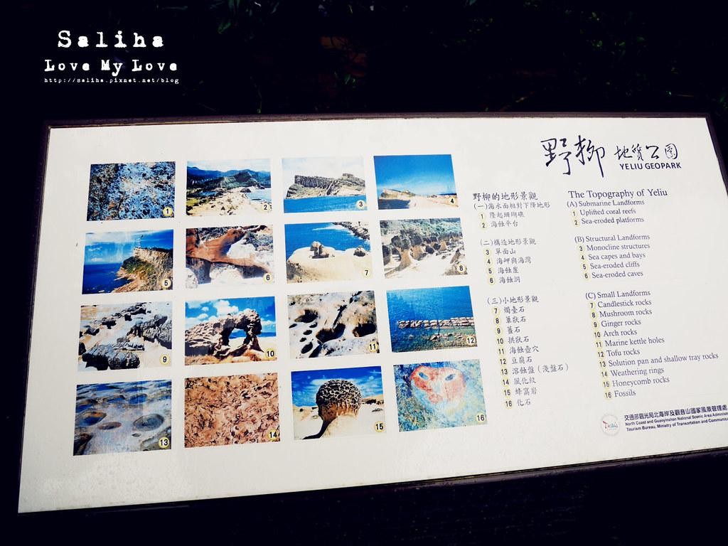 北海岸一日遊海邊景點推薦野柳地質公園  (6)