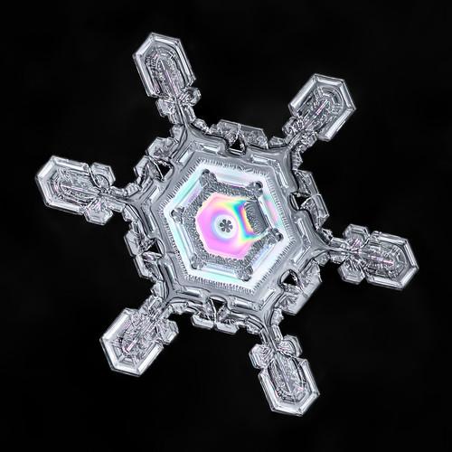 Snowflake-a-Day No. 13