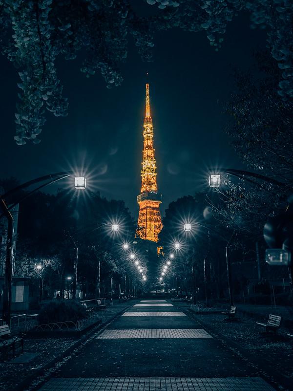 夜色鐵塔|Tokyo tower