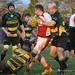 Bear Hug - Rugby (211)