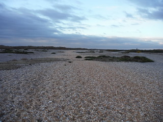 The Path (the red/brown-ish strip), Dungeness NNR