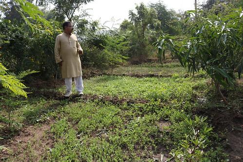 अपने खेत में खाने के लिये सब्जियाँ भी उगाते हैं