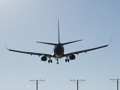 Southwest Boeing 737 Up Close