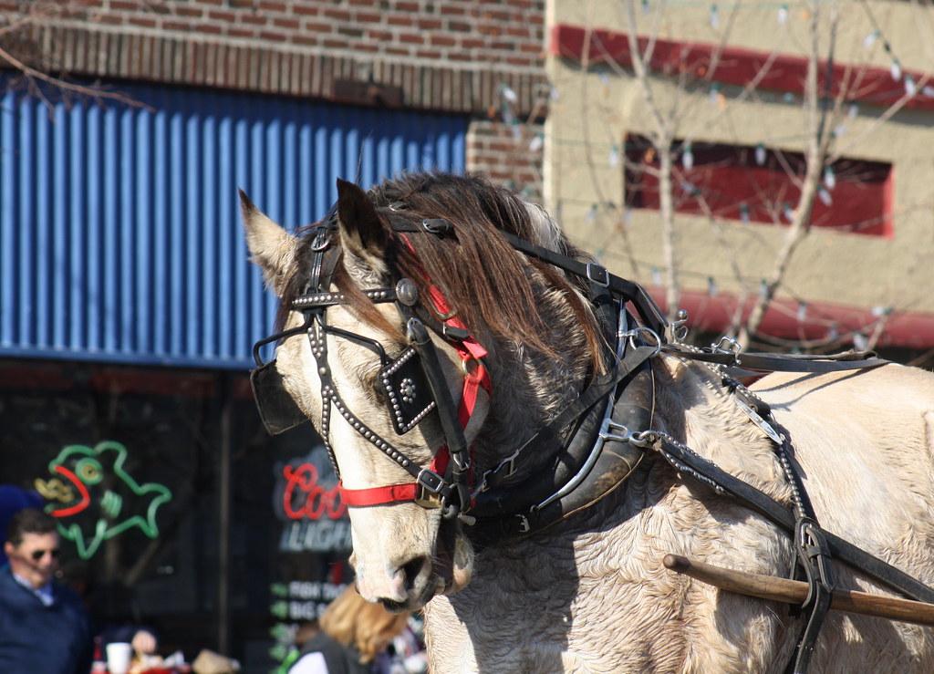 Lawrence Christmas Parade 1