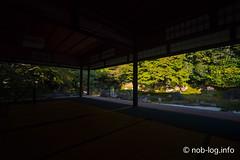 京都インスタ映えの旅 #7 圓徳院