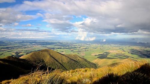 Waimate landscape