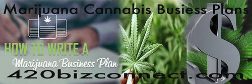 marijuana business plans