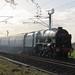 46100 'Royal Scot' Class7P