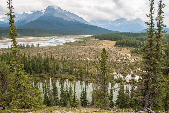 2017 08 - Canada - Banff and Jasper-68.jpg