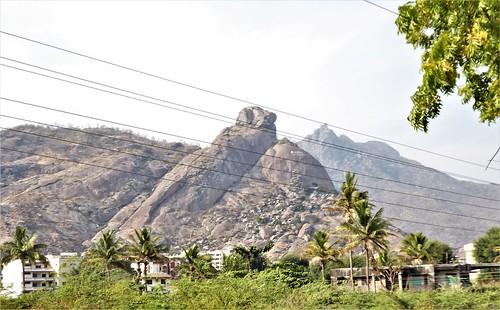 i-jodhpur-mount abu-route  (43)