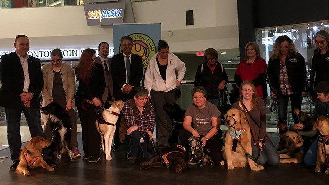 More service dogs to help with disabilities, PTSD