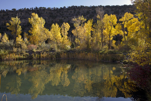 cottonwood fall autumn fallcolors autumncolors pond reflection colorado landscape