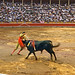 Vintage Kodachrome. July 1959. Spain. Pamplona. Corrida de la Saint Firmin.