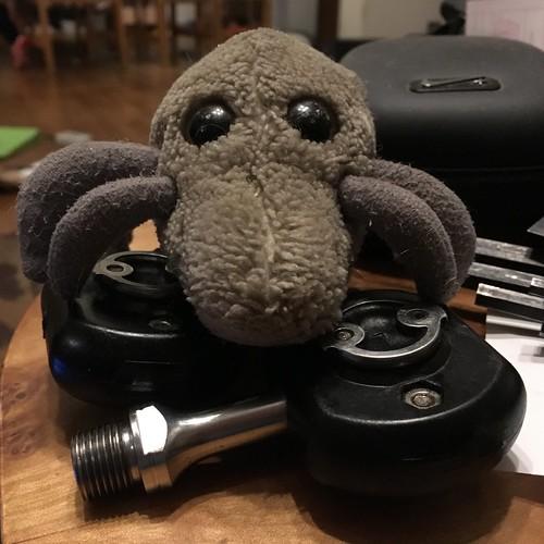 Dust Mite pedals