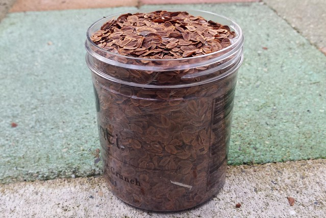 side view of a clear plastic container completely full of brown seeds