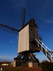 Le moulin de la Victoire à Hondschoote - Photo of Killem