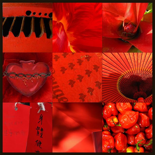 Mood board in scarlet