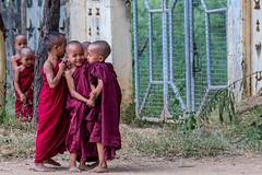 Novice monks playing - Bagan, Myanmar